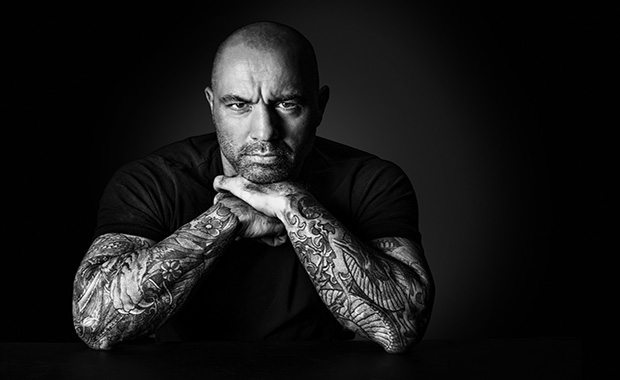 37 Joe Rogan Quotes That Will Motivate You to Greatness